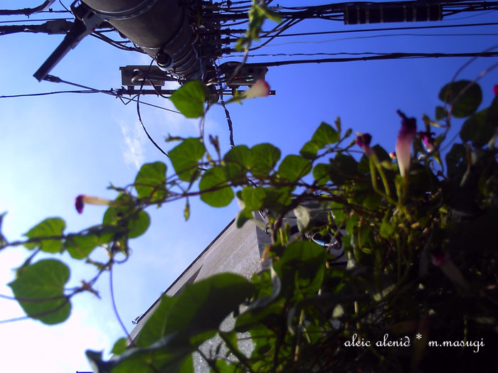 PICT0059.jpg